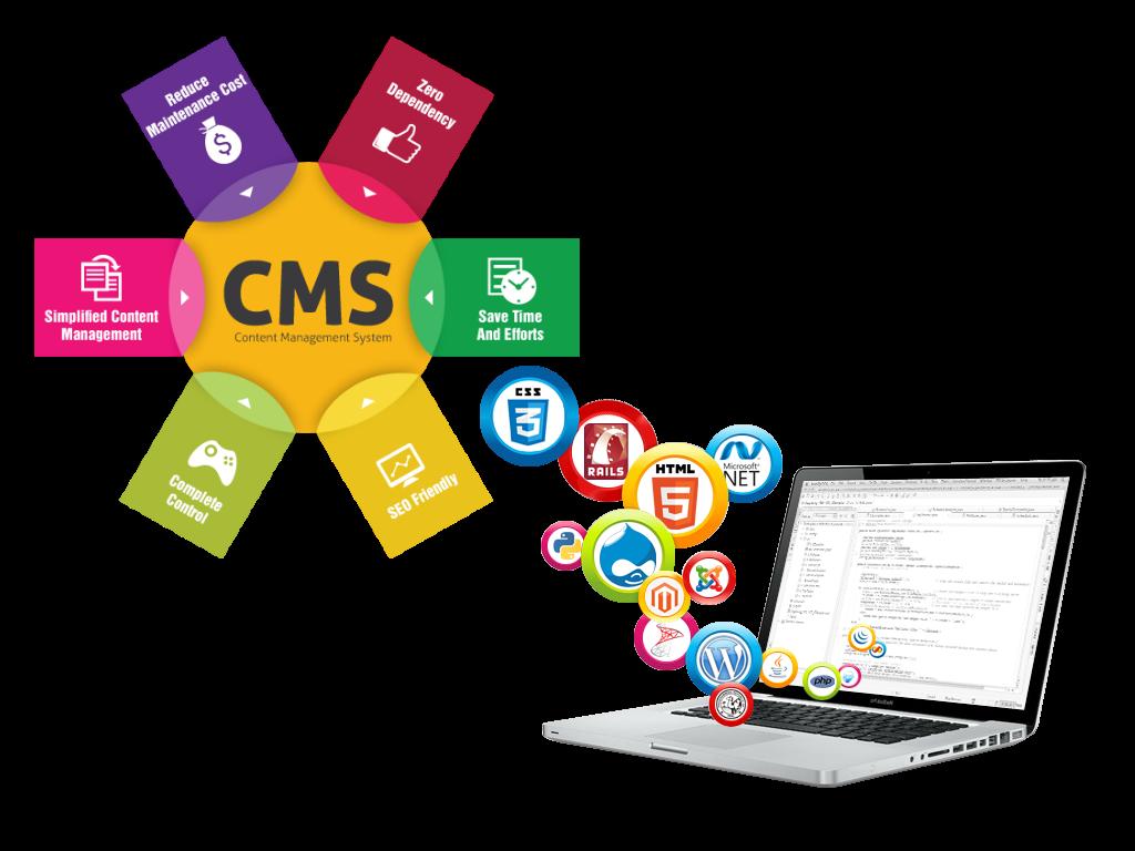CMS Web Application Development